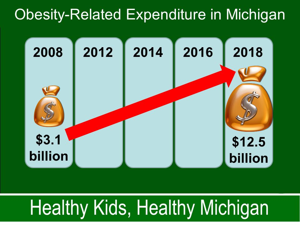 Obesity-Related Expenditure in Michigan 2008 2012201420162018 $3.1 billion $12.5 billion