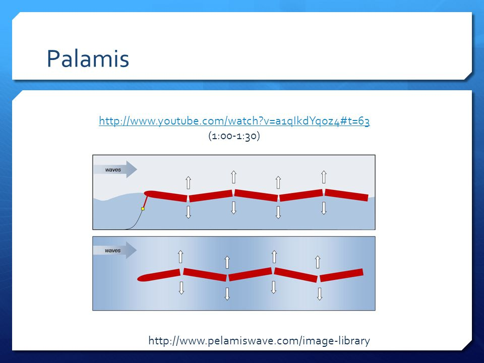 Palamis http://www.pelamiswave.com/image-library http://www.youtube.com/watch?v=a1qIkdYqoz4#t=63 (1:00-1:30)