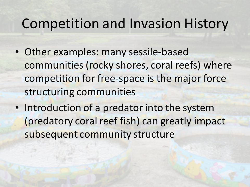 Competition and Invasion History Other examples: many sessile-based communities (rocky shores, coral reefs) where competition for free-space is the ma