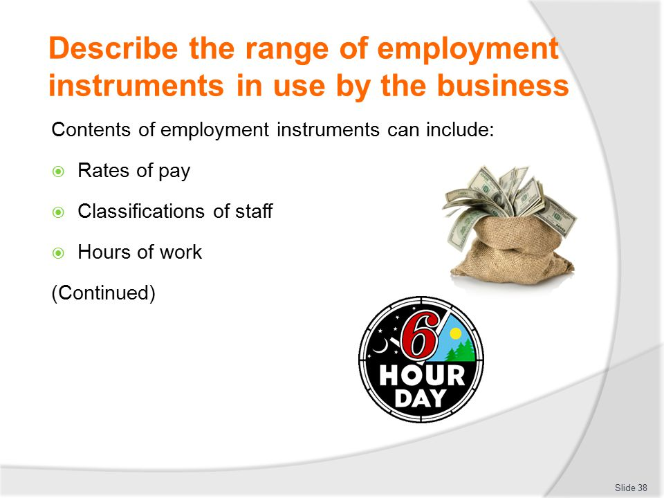 Describe the range of employment instruments in use by the business Contents of employment instruments can include:  Rates of pay  Classifications o