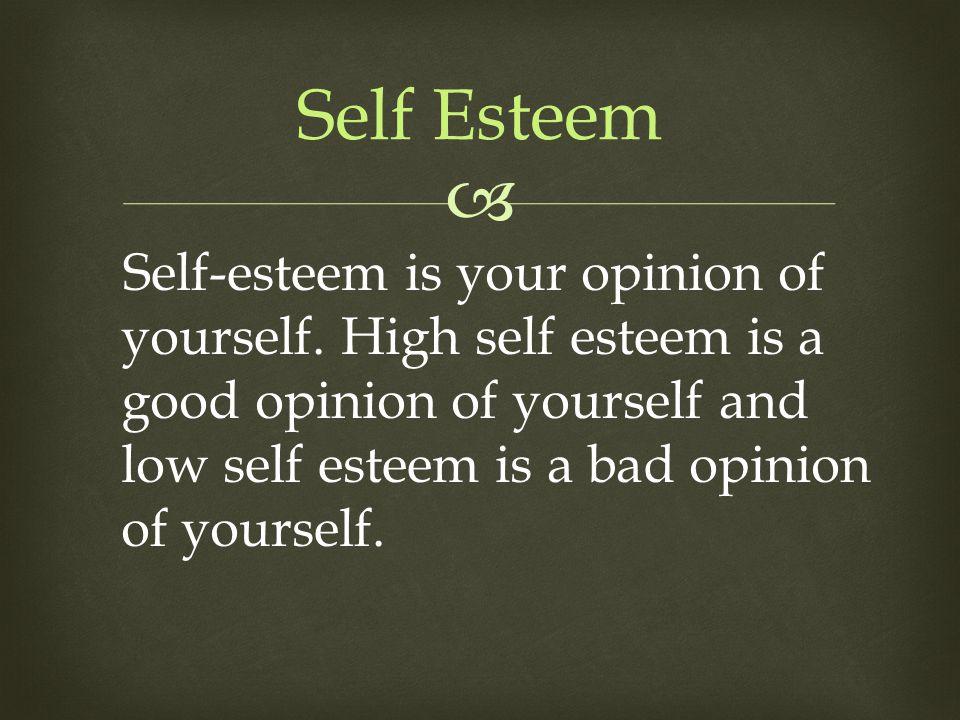  Self Esteem Self-esteem is your opinion of yourself. High self esteem is a good opinion of yourself and low self esteem is a bad opinion of yourself