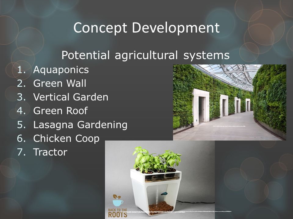 Concept Development Potential agricultural systems 1.Aquaponics 2.Green Wall 3.Vertical Garden 4.Green Roof 5.Lasagna Gardening 6.Chicken Coop 7.Tractor http://www.google.com/imgres?q=aquaponics&um=1&sa=N&biw=1920&bih=875&hl=en&tbm=isch&tbnid=OO10J7xTiJh5AM:&imgrefurl=http://www.kickstarter.com/projects/2142509221/home-aquaponics-kit-self-cleaning-fish-tank-that-g&docid=fzNCvBwGeM5YRM&imgurl=https://s3.amazonaws.com/ksr/projects/379409/photo- main.jpg%253F1355539638&w=640&h=480&ei=1F_5UZ2lOeHA4AOluIDYBg&zoom=1&iact=rc&dur=78&page=1&tbnh=137&tbnw=185&start=0&ndsp=46&ved=1t:429,r:2,s:0,i:94&tx=130&ty=75 http://inhabitat.com/largest-green-wall-in-north-america-to-be-unveiled-tomorrow/new-6-68/