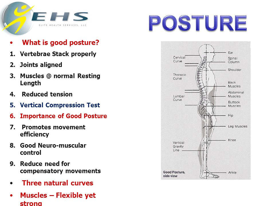 What is good posture.