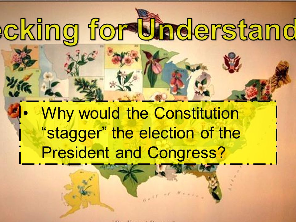 Why would the Constitution stagger the election of the President and Congress?