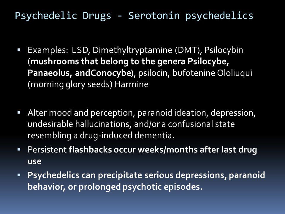 Psychedelic Drugs - Serotonin psychedelics  Examples: LSD, Dimethyltryptamine (DMT), Psilocybin (mushrooms that belong to the genera Psilocybe, Panae
