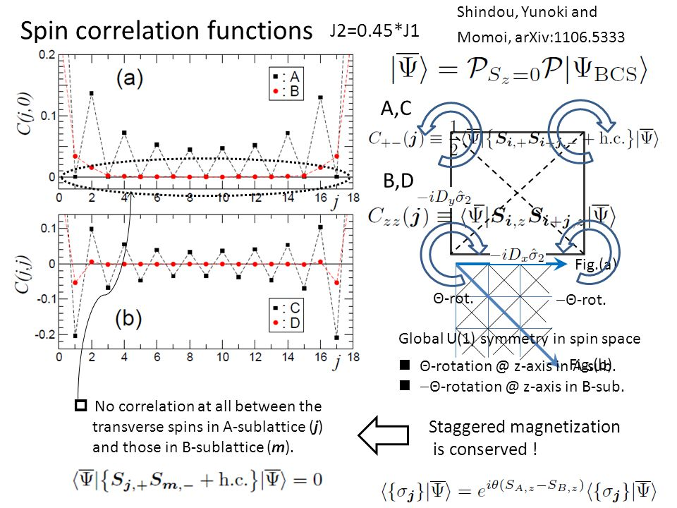Spin correlation functions Fig.(a) Fig.(b) A,C B,D  No correlation at all between the transverse spins in A-sublattice (j) and those in B-sublattice