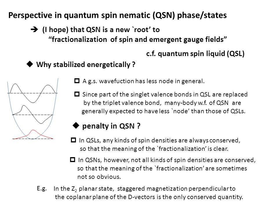 " (I hope) that QSN is a new `root' to ""fractionalization of spin and emergent gauge fields"" Perspective in quantum spin nematic (QSN) phase/states c."