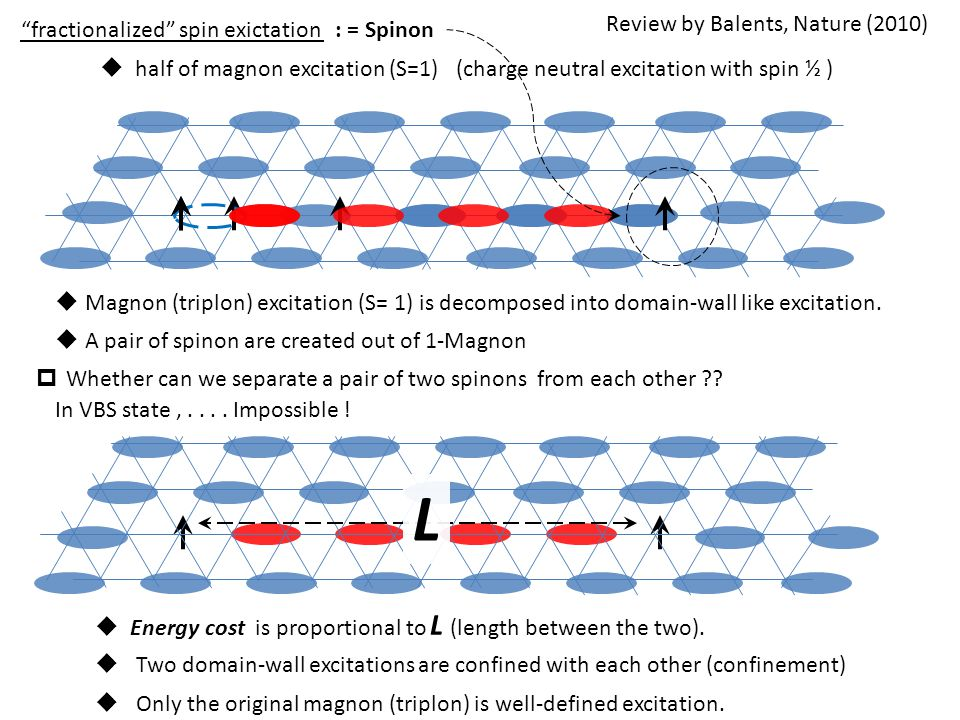 """fractionalized"" spin exictation  half of magnon excitation (S=1) (charge neutral excitation with spin ½ )  Magnon (triplon) excitation (S= 1) is de"