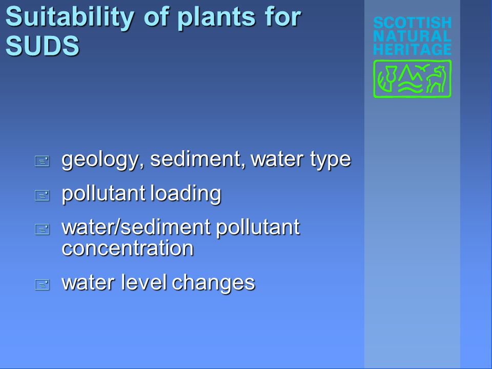 Suitability of plants for SUDS + geology, sediment, water type + pollutant loading + water/sediment pollutant concentration + water level changes