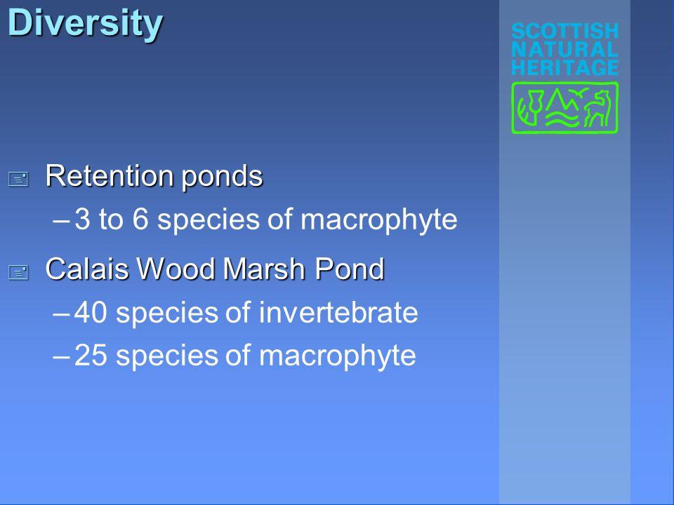 Diversity + Retention ponds –3 to 6 species of macrophyte + Calais Wood Marsh Pond –40 species of invertebrate –25 species of macrophyte