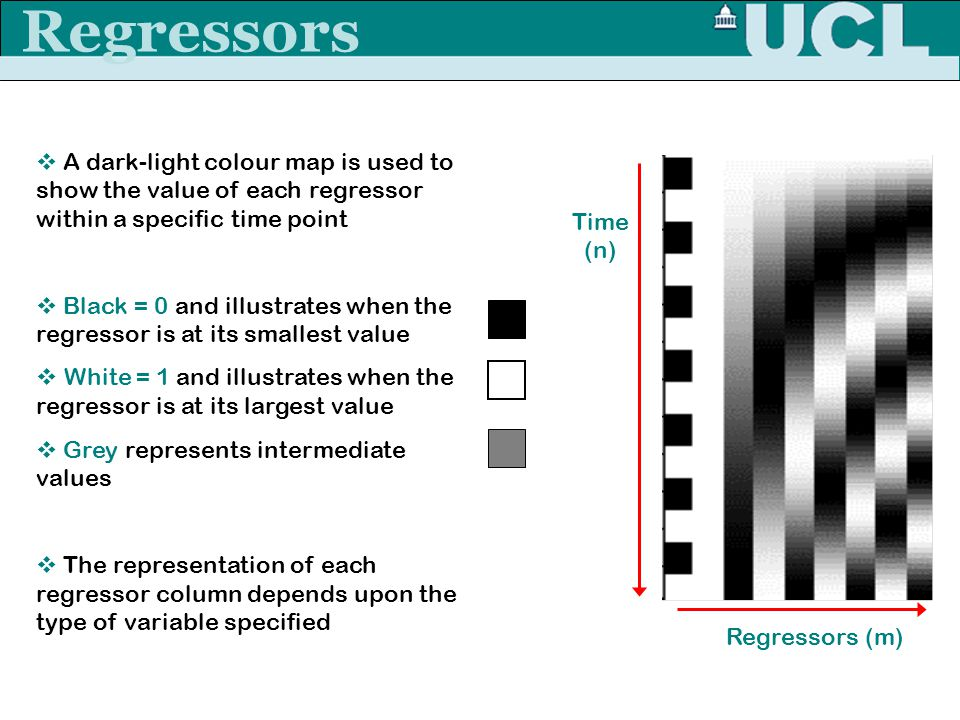 Rebecca Knight Regressors Time (n) Regressors (m)  A dark-light colour map is used to show the value of each regressor within a specific time point 