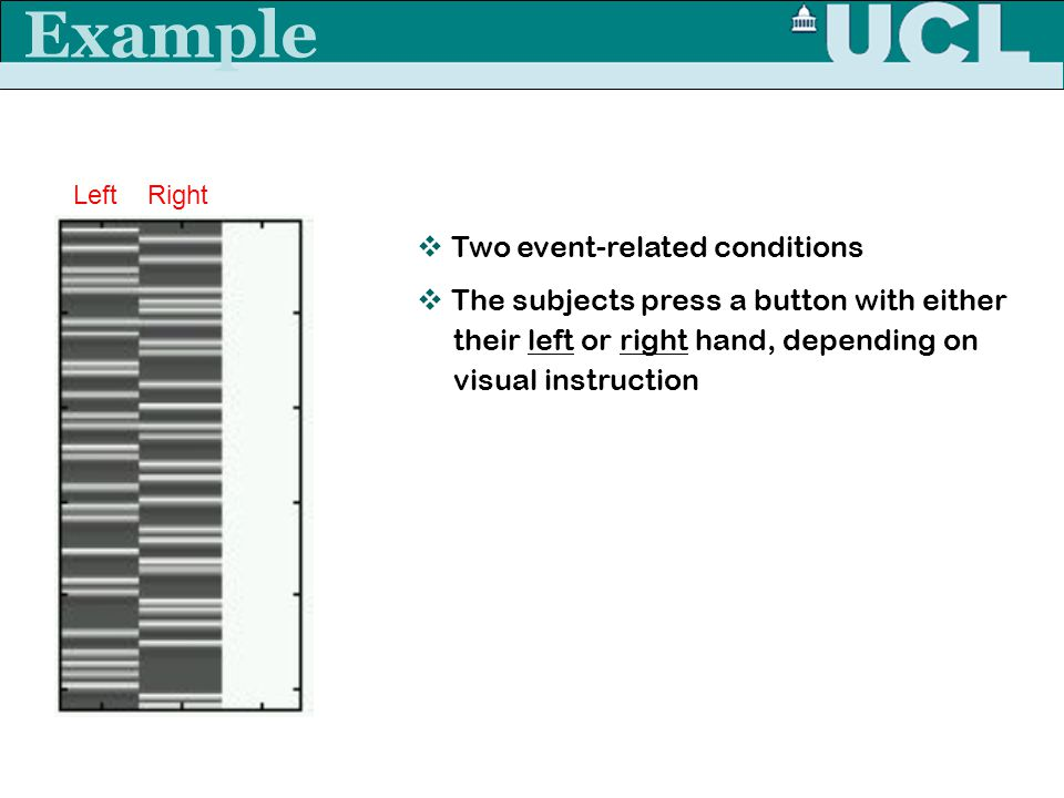 Example  Two event-related conditions  The subjects press a button with either their left or right hand, depending on visual instruction Left Right