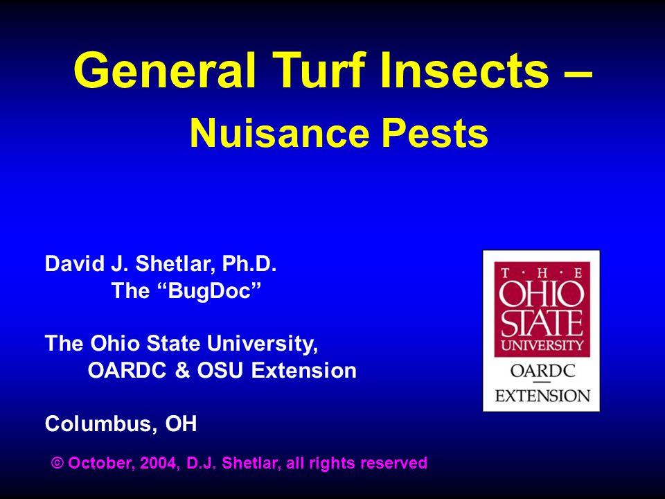 General Turf Insects – Nuisance Pests David J.Shetlar, Ph.D.