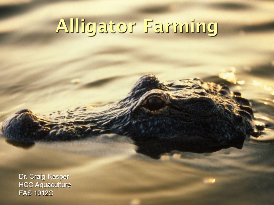 Alligator Farming Dr. Craig Kasper HCC Aquaculture FAS 1012C