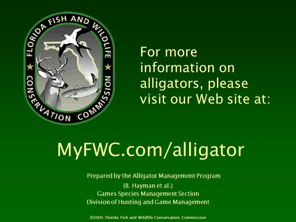 MyFWC.com/alligator For more information on alligators, please visit our Web site at: Prepared by the Alligator Management Program (B.
