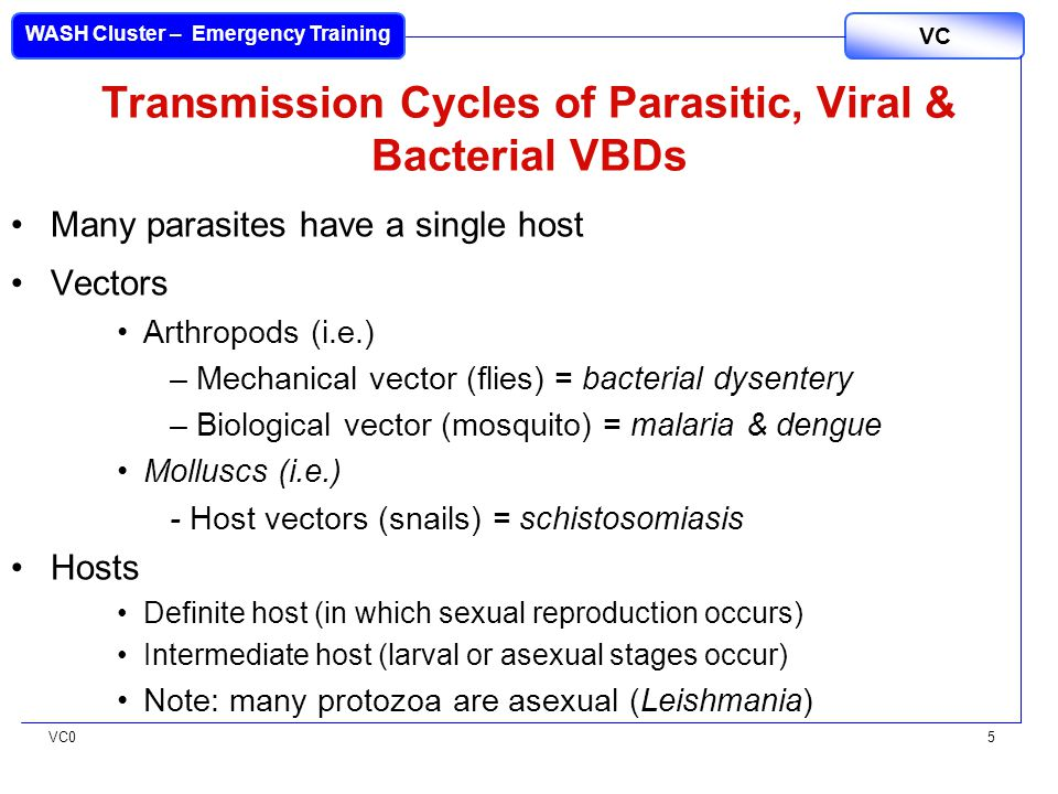 VC0 VC WASH Cluster – Emergency Training 5 Transmission Cycles of Parasitic, Viral & Bacterial VBDs Many parasites have a single host Vectors Arthropods (i.e.) –Mechanical vector (flies) = bacterial dysentery –Biological vector (mosquito) = malaria & dengue Molluscs (i.e.) - Host vectors (snails) = schistosomiasis Hosts Definite host (in which sexual reproduction occurs) Intermediate host (larval or asexual stages occur) Note: many protozoa are asexual (Leishmania)