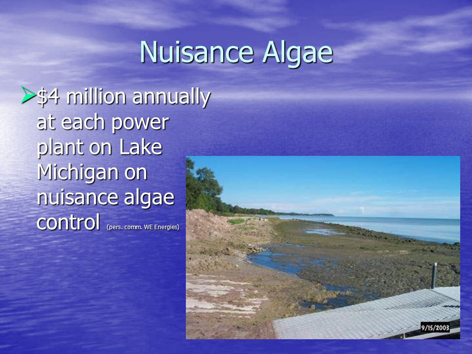 Nuisance Algae  $4 million annually at each power plant on Lake Michigan on nuisance algae control (pers.