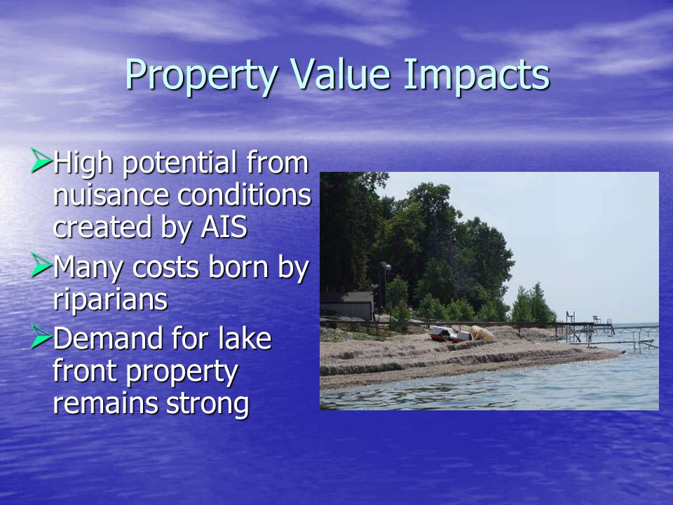 Property Value Impacts  High potential from nuisance conditions created by AIS  Many costs born by riparians  Demand for lake front property remain
