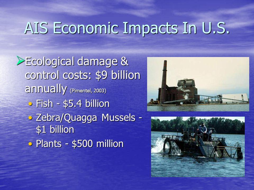 AIS Economic Impacts In U.S.