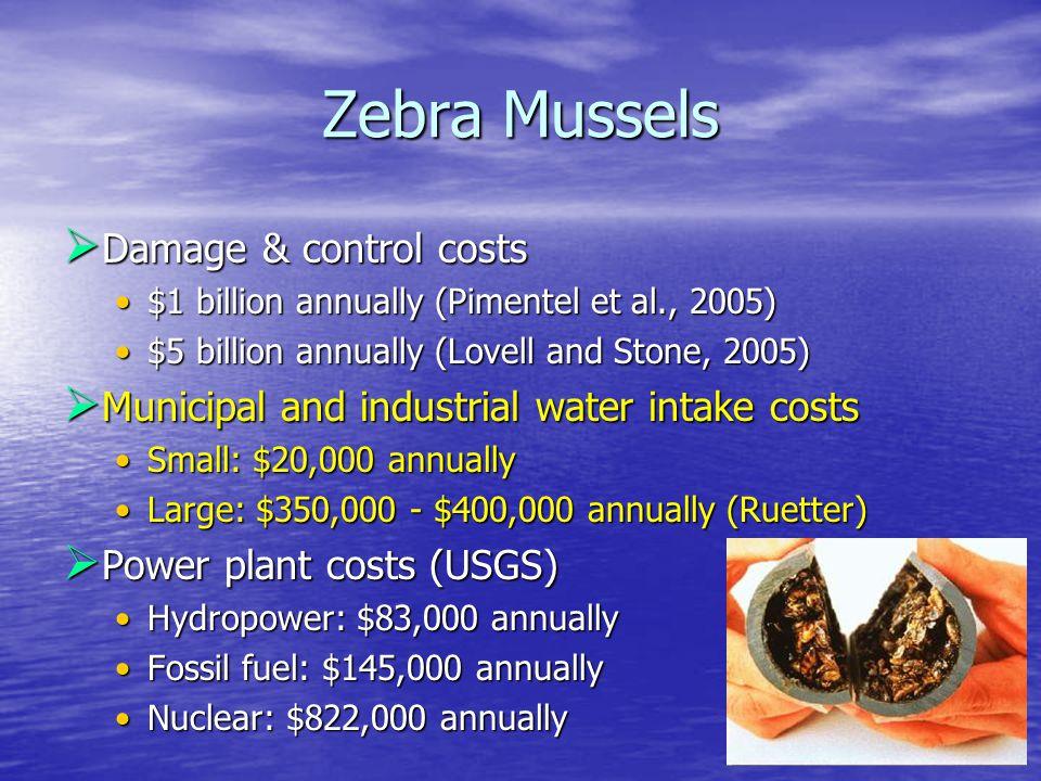 Zebra Mussels  Damage & control costs $1 billion annually (Pimentel et al., 2005)$1 billion annually (Pimentel et al., 2005) $5 billion annually (Lovell and Stone, 2005)$5 billion annually (Lovell and Stone, 2005)  Municipal and industrial water intake costs Small: $20,000 annuallySmall: $20,000 annually Large: $350,000 - $400,000 annually (Ruetter)Large: $350,000 - $400,000 annually (Ruetter)  Power plant costs (USGS) Hydropower: $83,000 annuallyHydropower: $83,000 annually Fossil fuel: $145,000 annuallyFossil fuel: $145,000 annually Nuclear: $822,000 annuallyNuclear: $822,000 annually