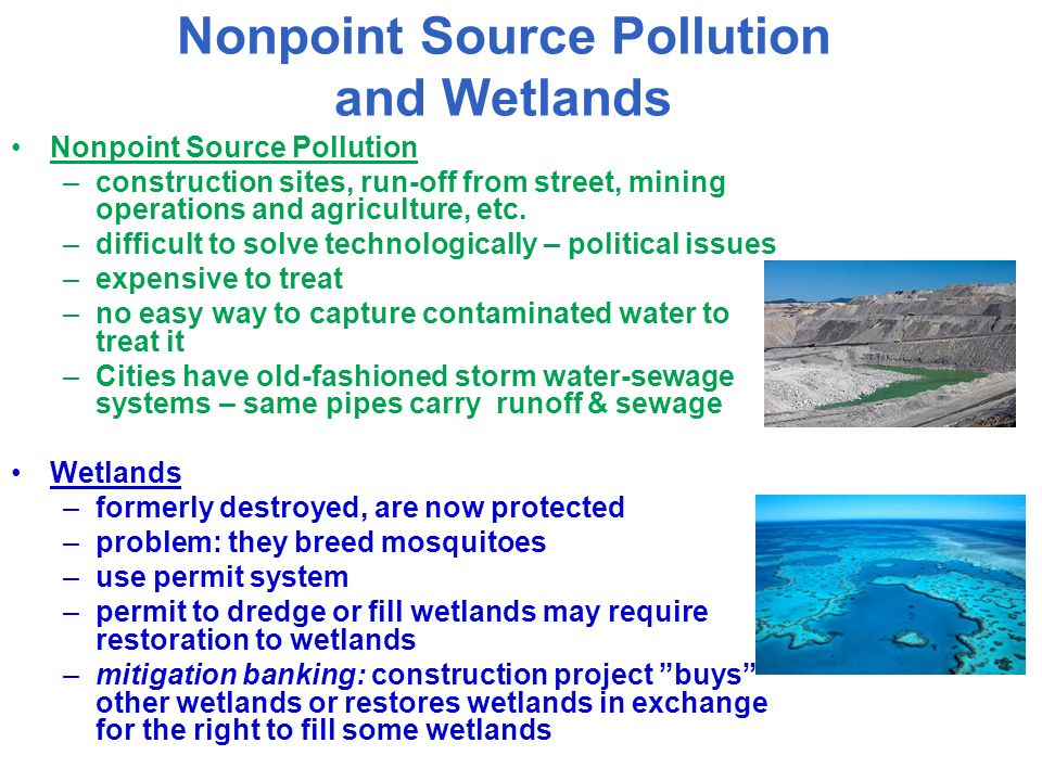 Nonpoint Source Pollution and Wetlands Nonpoint Source Pollution –construction sites, run-off from street, mining operations and agriculture, etc. –di
