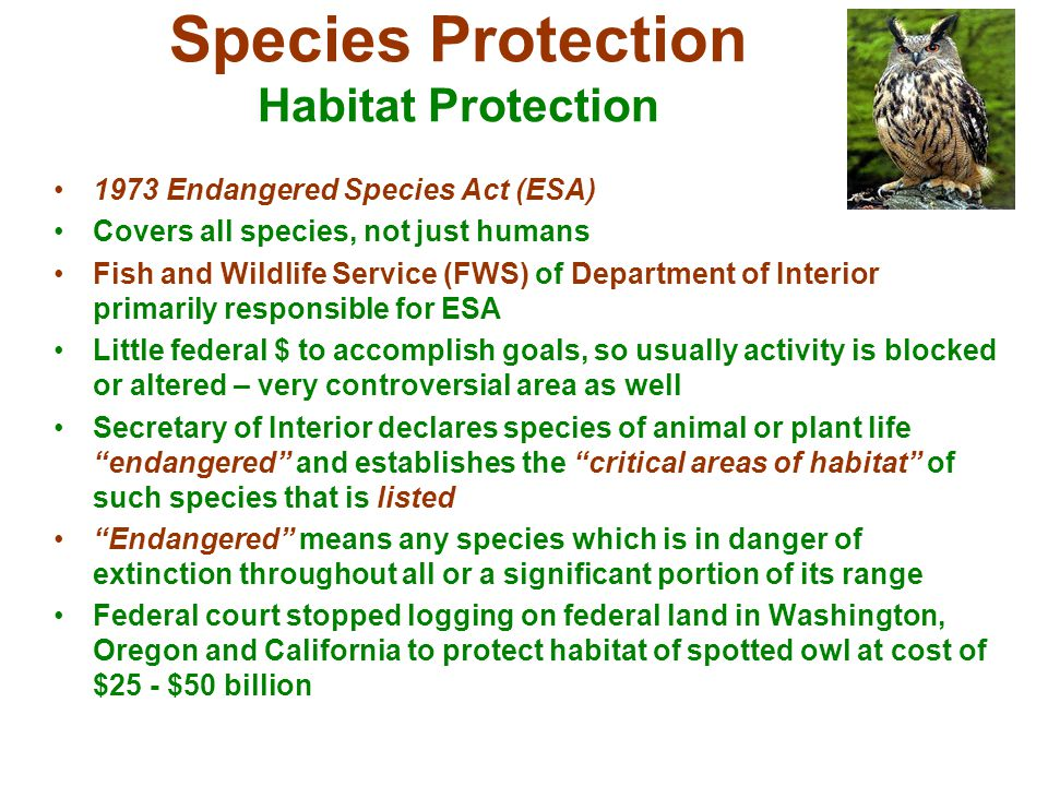 Species Protection Habitat Protection 1973 Endangered Species Act (ESA) Covers all species, not just humans Fish and Wildlife Service (FWS) of Departm