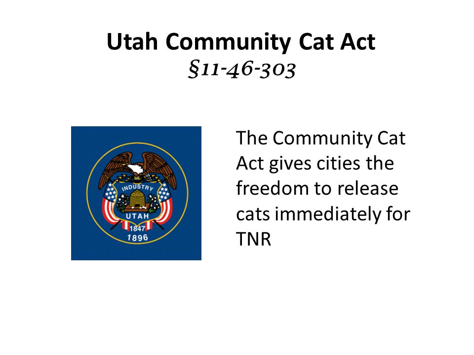 Utah Community Cat Act §11-46-303 The Community Cat Act gives cities the freedom to release cats immediately for TNR