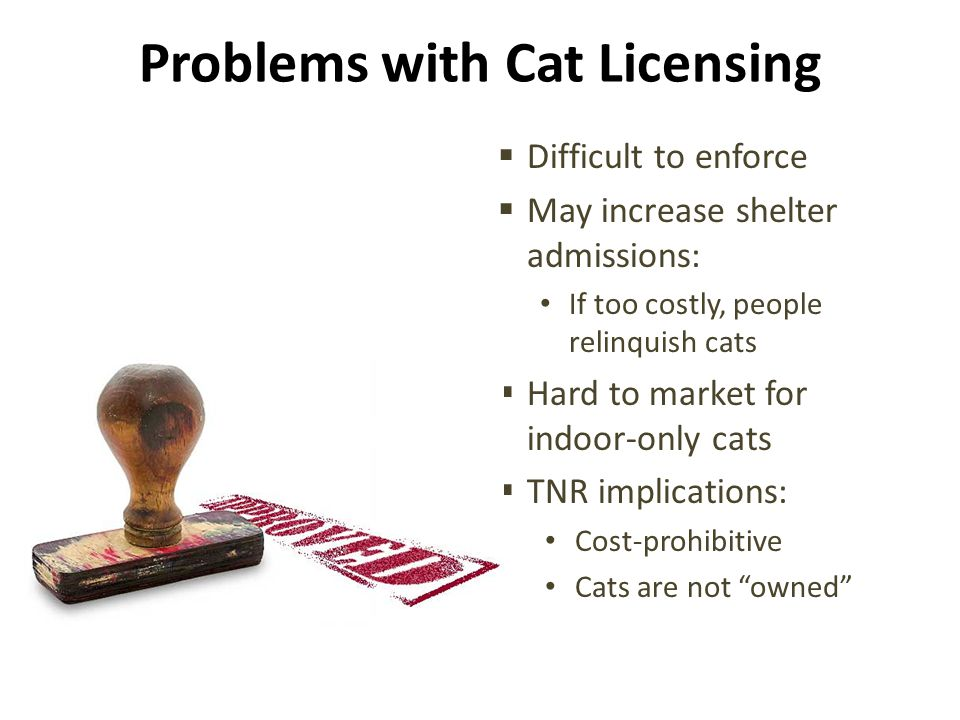 Problems with Cat Licensing  Difficult to enforce  May increase shelter admissions: If too costly, people relinquish cats  Hard to market for indoor-only cats  TNR implications: Cost-prohibitive Cats are not owned