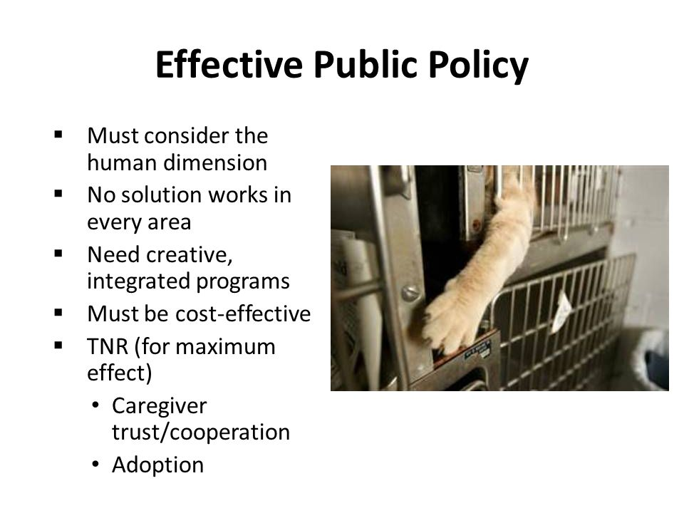 Effective Public Policy  Must consider the human dimension  No solution works in every area  Need creative, integrated programs  Must be cost-effective  TNR (for maximum effect) Caregiver trust/cooperation Adoption