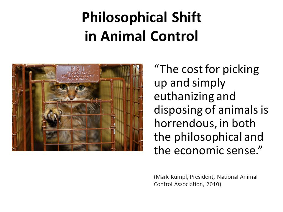 Philosophical Shift in Animal Control The cost for picking up and simply euthanizing and disposing of animals is horrendous, in both the philosophical and the economic sense. (Mark Kumpf, President, National Animal Control Association, 2010)