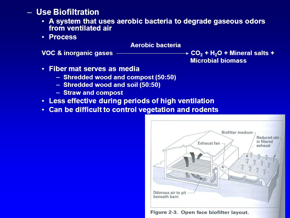 –Use Biofiltration A system that uses aerobic bacteria to degrade gaseous odors from ventilated air Process Aerobic bacteria VOC & inorganic gases CO 2 + H 2 O + Mineral salts + Microbial biomass Fiber mat serves as media –Shredded wood and compost (50:50) –Shredded wood and soil (50:50) –Straw and compost Less effective during periods of high ventilation Can be difficult to control vegetation and rodents