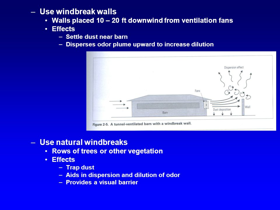 –Use windbreak walls Walls placed 10 – 20 ft downwind from ventilation fans Effects –Settle dust near barn –Disperses odor plume upward to increase dilution –Use natural windbreaks Rows of trees or other vegetation Effects –Trap dust –Aids in dispersion and dilution of odor –Provides a visual barrier