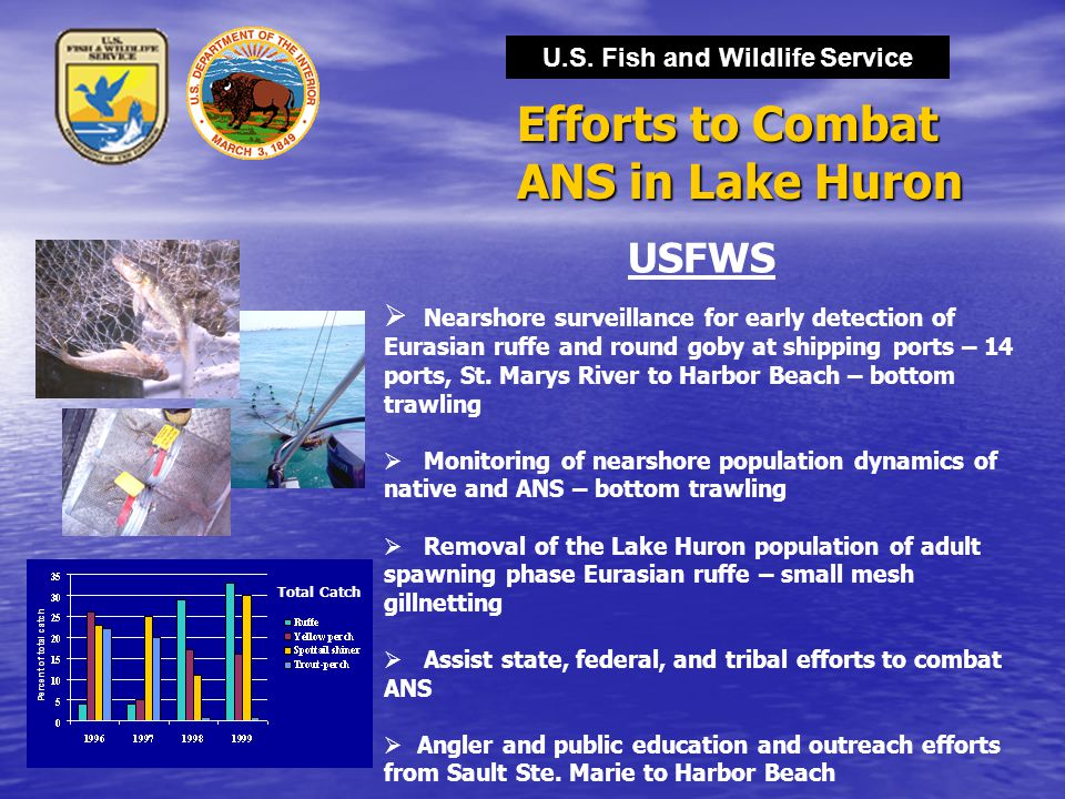 U.S. Fish and Wildlife Service Efforts to Combat ANS in Lake Huron USFWS  Nearshore surveillance for early detection of Eurasian ruffe and round goby
