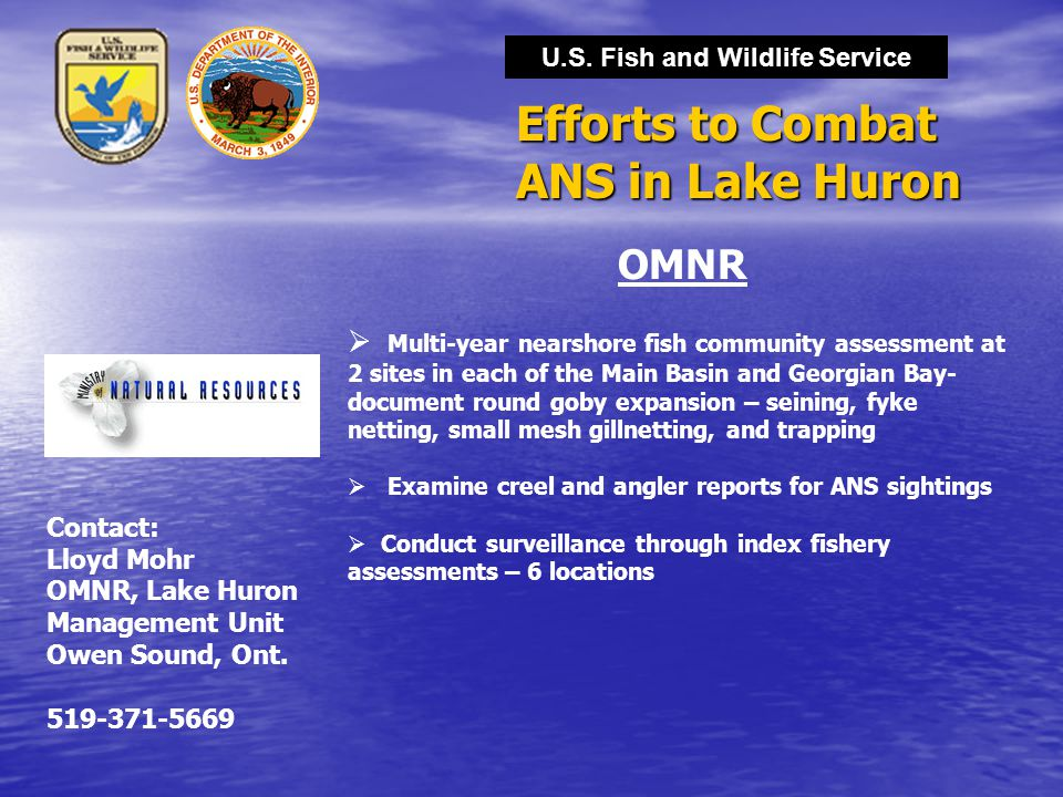 U.S. Fish and Wildlife Service Efforts to Combat ANS in Lake Huron OMNR  Multi-year nearshore fish community assessment at 2 sites in each of the Mai