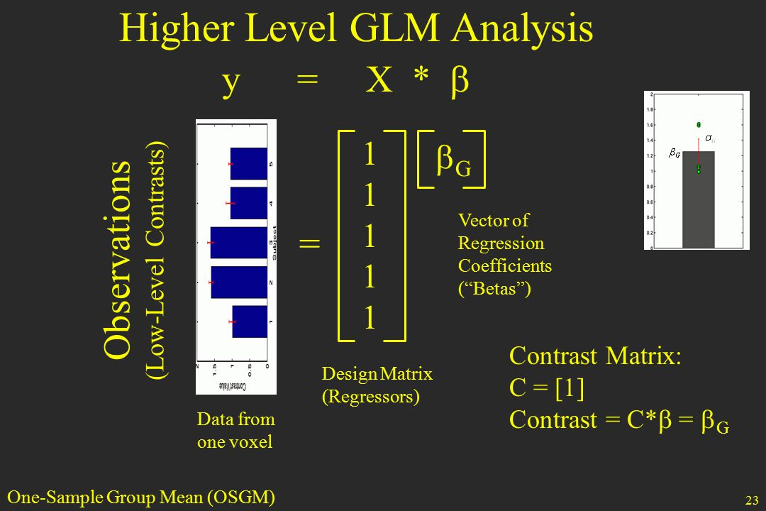 23 Higher Level GLM Analysis = 1111111111 GG y = X *  Data from one voxel Design Matrix (Regressors) Vector of Regression Coefficients ( Betas ) Observations (Low-Level Contrasts) Contrast Matrix: C = [1] Contrast = C*  =  G One-Sample Group Mean (OSGM)
