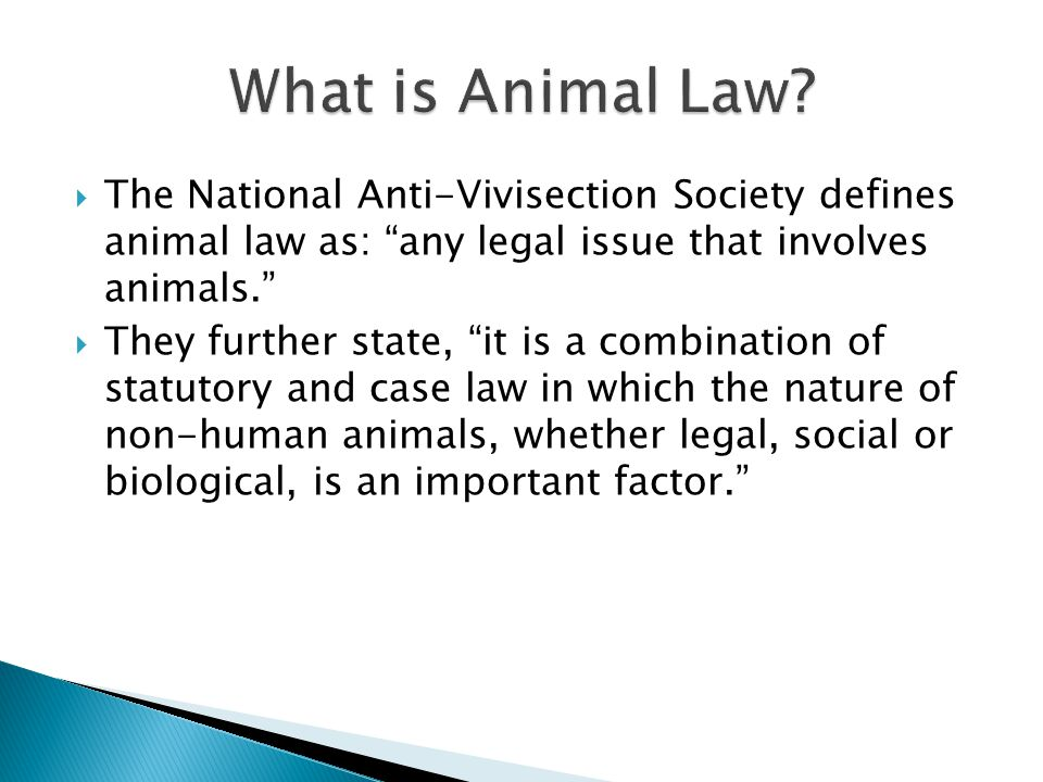  The National Anti-Vivisection Society defines animal law as: any legal issue that involves animals.  They further state, it is a combination of statutory and case law in which the nature of non-human animals, whether legal, social or biological, is an important factor.