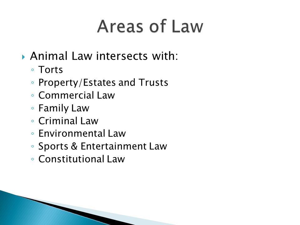 Torts Property/Estates and Trusts  Dog bites  Nuisance and property damage  Vet malpractice  Ownership and transfer of ownership  Patents  Pet trusts
