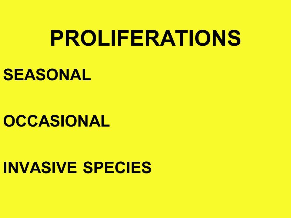 1) SEASONAL PROLIFERATIONS