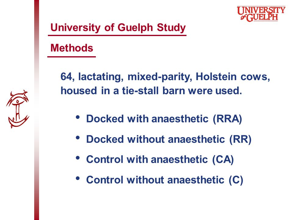 University of Guelph Study Methods 64, lactating, mixed-parity, Holstein cows, housed in a tie-stall barn were used.