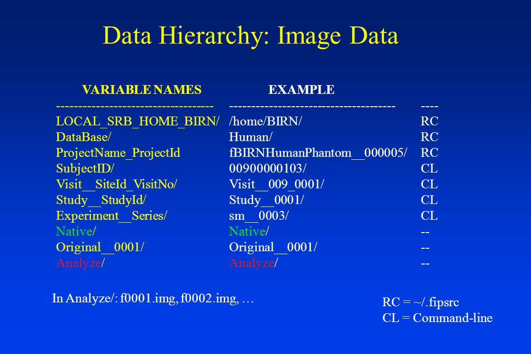 Data Hierarchy: Image Data VARIABLE NAMES ------------------------------------ LOCAL_SRB_HOME_BIRN/ DataBase/ ProjectName_ProjectId SubjectID/ Visit__SiteId_VisitNo/ Study__StudyId/ Experiment__Series/ Native/ Original__0001/ Analyze/ EXAMPLE -------------------------------------- /home/BIRN/ Human/ fBIRNHumanPhantom__000005/ 00900000103/ Visit__009_0001/ Study__0001/ sm__0003/ Native/ Original__0001/ Analyze/ ---- RC CL -- RC = ~/.fipsrc CL = Command-line In Analyze/: f0001.img, f0002.img, …