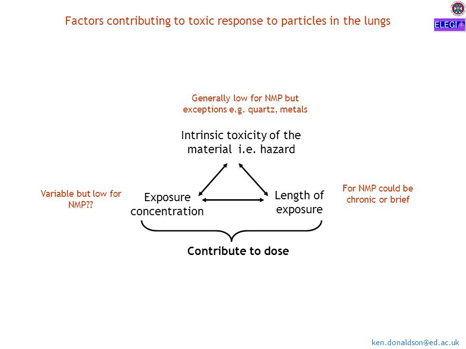 ken.donaldson@ed.ac.uk Factors contributing to toxic response to particles in the lungs Intrinsic toxicity of the material i.e.