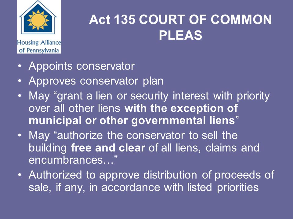 """Act 135 COURT OF COMMON PLEAS Appoints conservator Approves conservator plan May """"grant a lien or security interest with priority over all other liens"""