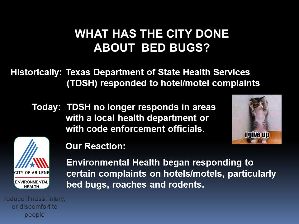 WHAT HAS THE CITY DONE ABOUT BED BUGS.
