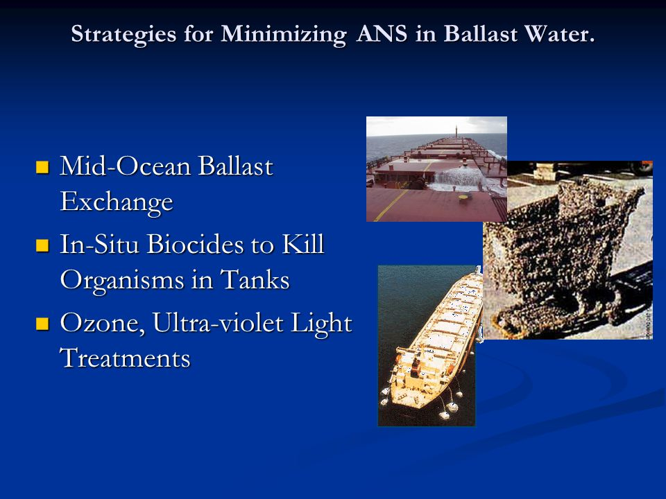 Strategies for Minimizing ANS in Ballast Water.
