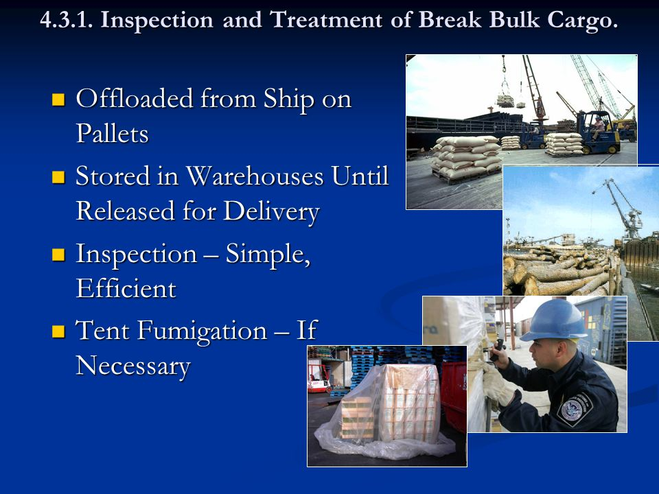 4.3.1. Inspection and Treatment of Break Bulk Cargo.