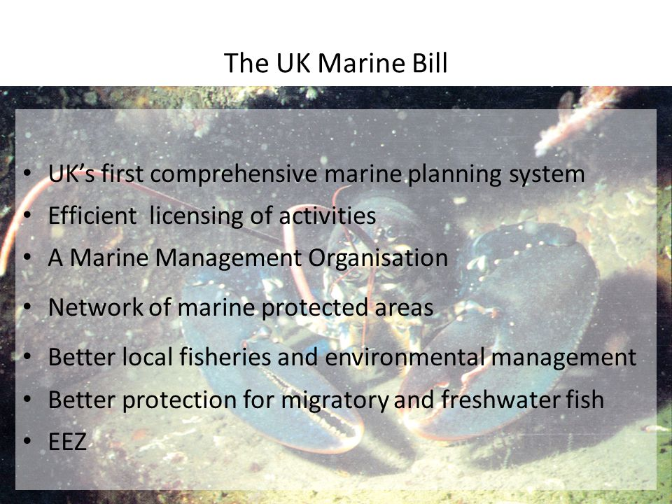 The UK Marine Bill UK's first comprehensive marine planning system Efficient licensing of activities A Marine Management Organisation Network of marine protected areas Better local fisheries and environmental management Better protection for migratory and freshwater fish EEZ