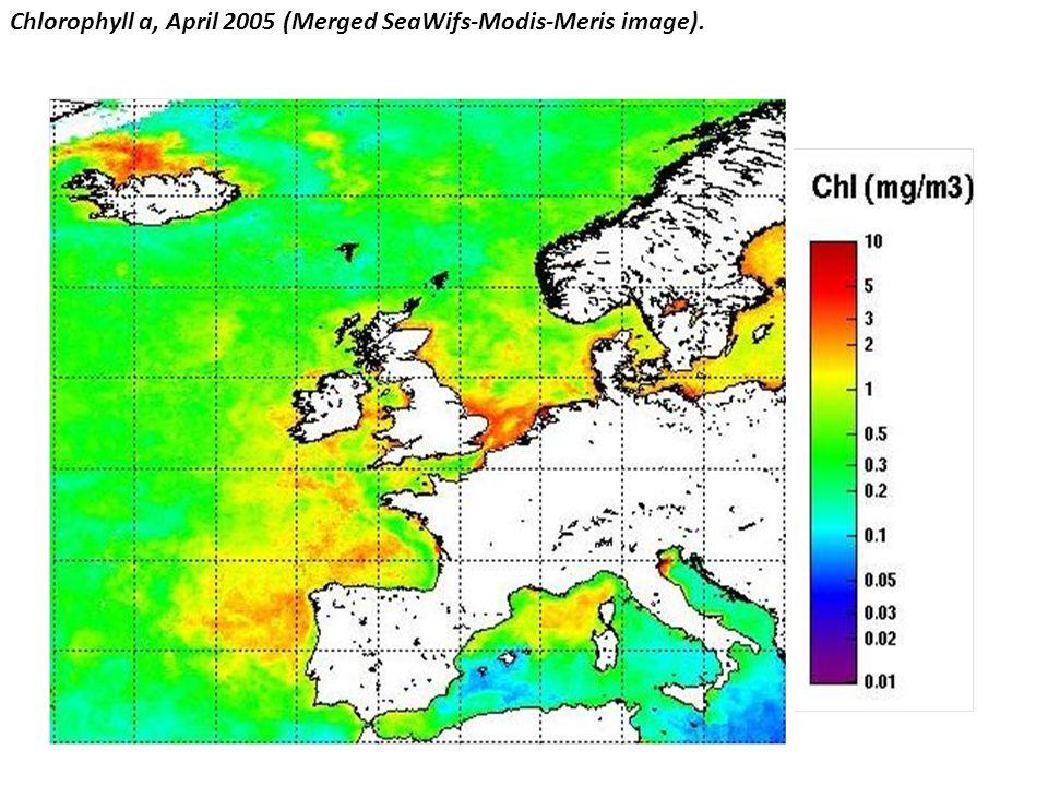 Chlorophyll a, April 2005 (Merged SeaWifs-Modis-Meris image).