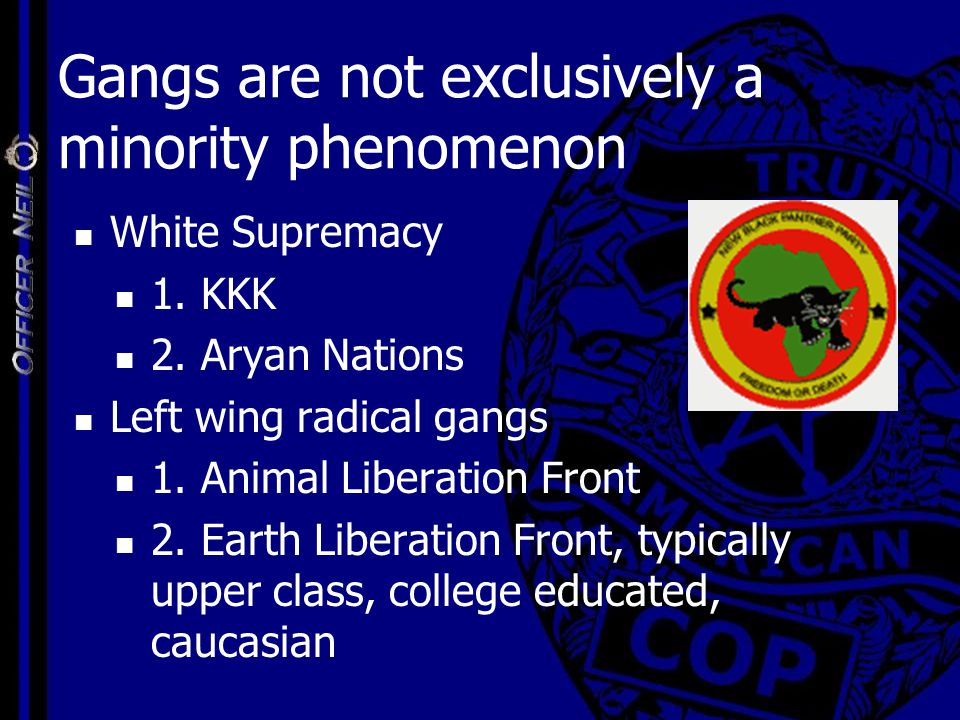 Gangs are not exclusively a minority phenomenon White Supremacy 1. KKK 2. Aryan Nations Left wing radical gangs 1. Animal Liberation Front 2. Earth Li