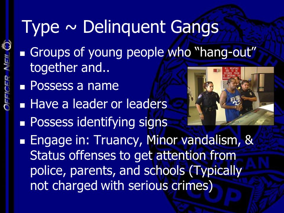 "Type ~ Delinquent Gangs Groups of young people who ""hang-out"" together and.. Possess a name Have a leader or leaders Possess identifying signs Engage"