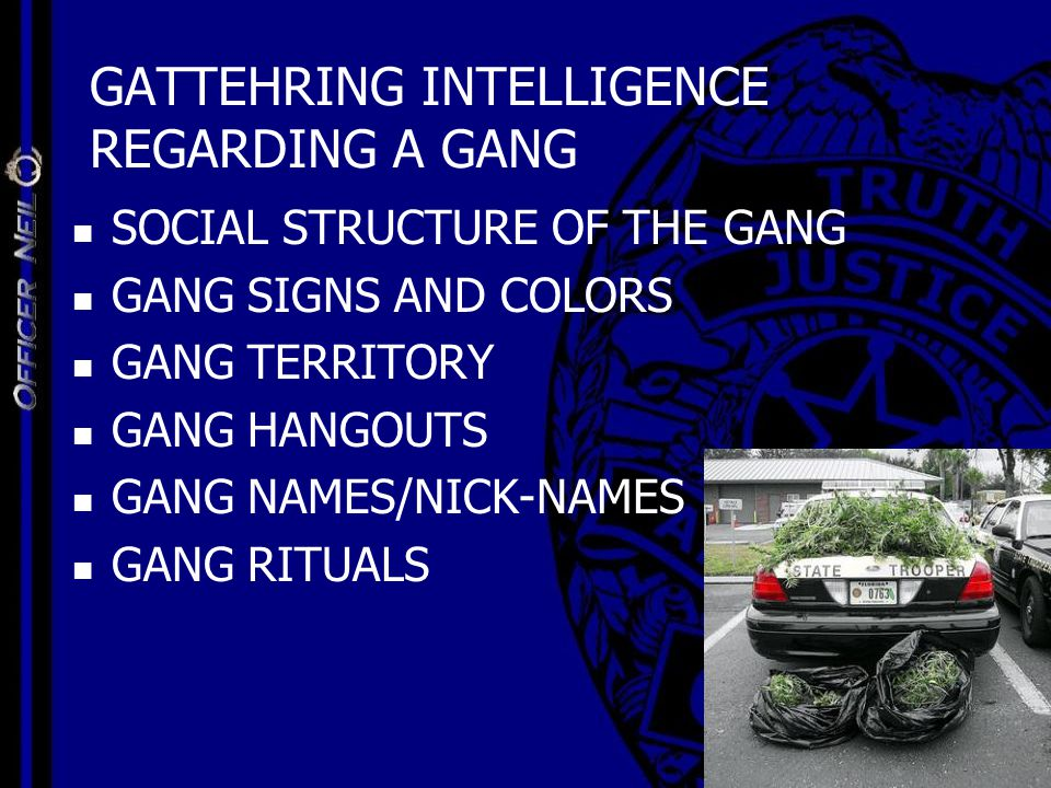 GATTEHRING INTELLIGENCE REGARDING A GANG SOCIAL STRUCTURE OF THE GANG GANG SIGNS AND COLORS GANG TERRITORY GANG HANGOUTS GANG NAMES/NICK-NAMES GANG RI